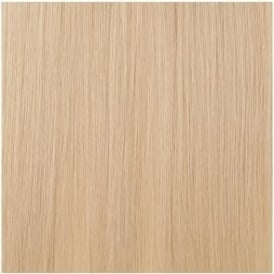 Vanilla Blonde Hair Extension (Colour 1001)