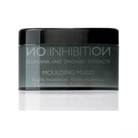 No Inhibition Moulding Mudd